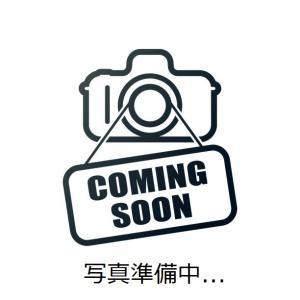 日本酒 佐賀県 東一 純米大吟醸 1.8L|kaneni-shouji