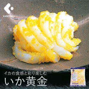 いか黄金 500g 黄金いか 珍味 つまみ 甲イカ 数の子 ししゃも卵 人気商品 kanetoku