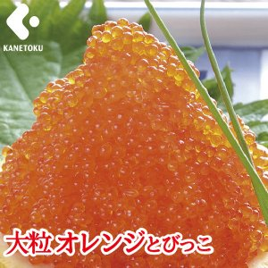 大粒 オレンジとびっこ 500g|とびっ子 トビッコ とびこ 飛びっ子 飛子|kanetoku