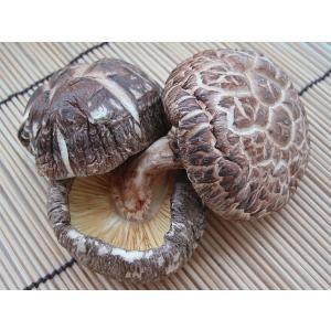 高級食材 袋入り 国産 上 どんこ 椎茸 500g|kani