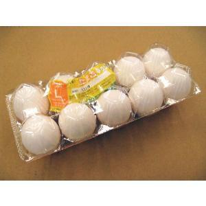 日常の食材 鶏卵 Lサイズ 1パック 10玉入