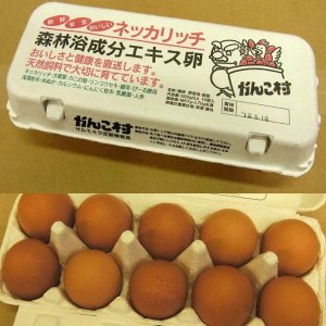 ≪4000円以上送料無料≫がんこ村 赤玉 鶏卵(玉子) 600g以上10玉入|kani