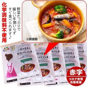 訳あり 化学調味料不使用 三陸青魚と野菜のトマト煮 5食 イワシの切り身入|kani