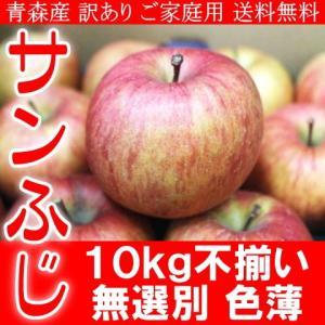 送料無料 ご予約 訳あり ご家庭用 青森産 サンふじ りんご 色薄 キズ 大小不揃い 10kg|kani