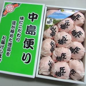 ご予約 愛媛 中島 小袋で包まれた高級みかん 中島便り 匠と極 1.5kg|kani