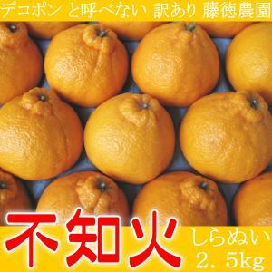 デコポン と呼べない 訳あり 和歌山 不知火 しらぬい 2.5kg|kani