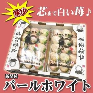 ご予約 奈良県産 白いちご 白苺 パールホワイト 2パック|kani