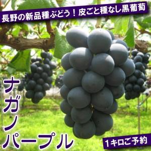 ご予約 長野の新品種ぶどう 皮ごと種なし 黒ぶどう ナガノパープル 1kg 2〜3房|kani