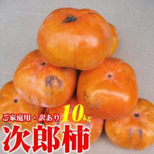 ご予約 訳あり ご家庭用 次郎柿 10kg キズ 割れ 大小不揃い バラ詰め かき カキ|kani