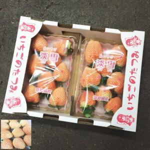 ご予約 奈良県産 白いちご 白苺 淡雪 2パック|kani