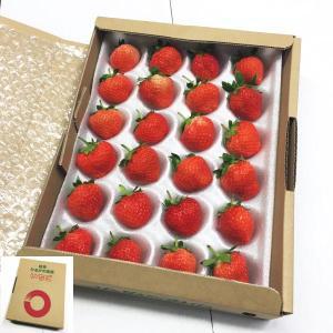 約300g:15玉〜36玉(大きさにより玉数は異なります)*夏いちごの品種ですので、形がやや変形して...