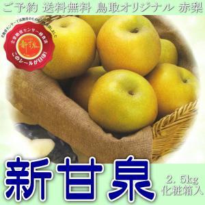 ご予約 送料無料 鳥取オリジナル 赤梨 新甘泉 しんかんせん 2.5kg 化粧箱入 kani