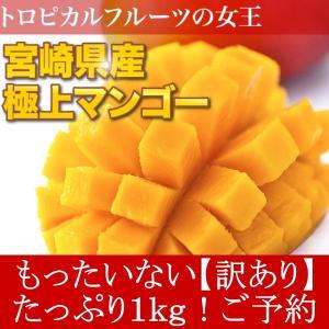 訳あり 宮崎県産 完熟アップルマンゴー 宮崎マンゴー 1kg ご予約