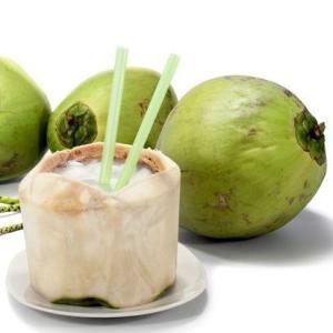 ヤシの実 やしの実 椰子の実 1玉 2.2kgUP|kani