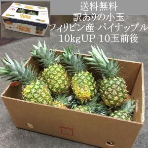 送料無料 訳ありの小玉 フィリピン産 パイナップル 10kgUP 10玉前後|kani