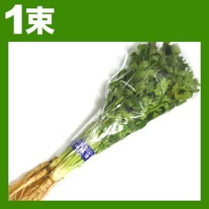香菜 シャンツァイ コリアンダー パクチー 1束約100g|kani
