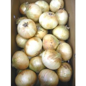 国産 玉ねぎ たまねぎ タマネギ 玉葱 1箱10kg|kani