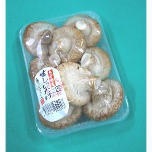 日常の一般野菜 生しいたけ 椎茸 1パック|kani