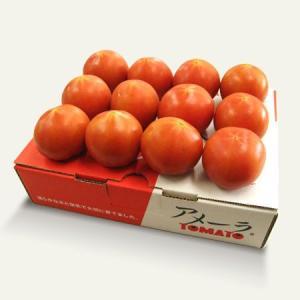 ≪4000円以上送料無料≫静岡県産 高糖度 フルーツトマト アメーラ 約1kg kani