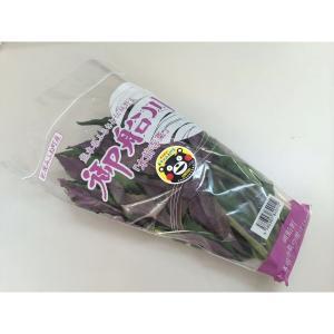 金時草 水前寺菜 式部草 1袋|kani
