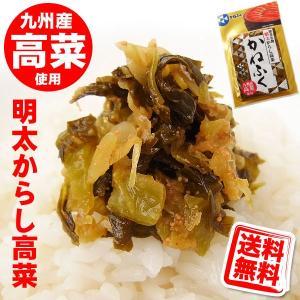 かねふく 明太 からし高菜 100g 送料無料 (メール便/同梱・代引不可)|kani