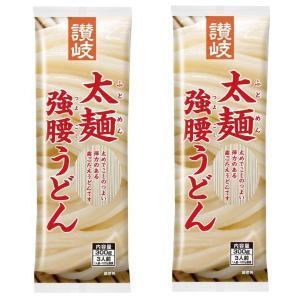送料無料 さぬきシセイ 讃岐 太麺 強腰うどん 300g 2袋 メール便 定形外郵便|kani