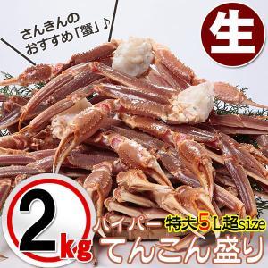 かに 蟹 カニ ずわい 送料無料 1肩350g超 特大5L〜7Lサイズ 生ズワイ蟹 てんこ盛り 3.2kg化粧箱|kani