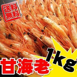 お刺身用 甘えび(有頭) 1kg [サイズMもしくはS] 送料無料|kani