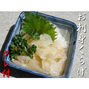 お刺身くらげ 500g (固形量250) 中外フーズ|kani