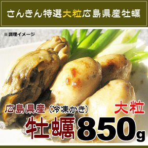 ≪週末限定SALE≫広島県産 大粒 カキ Lサイズ NetWt 850g (加熱用生牡蠣)|kani