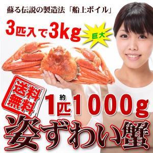 かに カニ 蟹 ズワイガニ 船上ボイル 超巨大姿ずわい蟹3k...