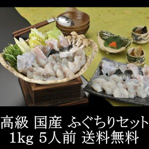 送料無料 ふぐ フグ 河豚 高級 国産 ふぐちりセット 1kg 5人前|kani