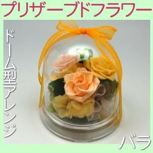 プリザーブドフラワー ドーム型アレンジ バラ 薔薇 ばら|kani
