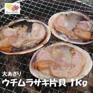 ウチムラサキと聞いて、耳なじみのない方もいらっしゃるかと思います。 ウチムラサキは北海道南部から九州...