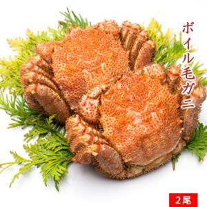 ボイル毛ガニ 約 650g × 2尾 計 約1.3kg/ 毛がに かに カニ 蟹 かにみそ 蟹みそ カニミソ|kanipara