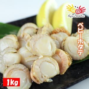ベビー帆立 1kg S 150〜200粒入り / 加熱用 ほたて ホタテ 貝 冷凍食品 お惣菜 ギフト|kanipara