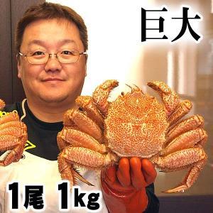 巨大な毛蟹 1kg ボイル冷凍 北海道産の毛ガニです。毛がに...
