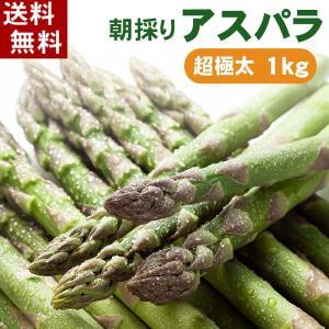 (送料無料)超極太3Lサイズ 北海道グリーンアスパラ 1kg...