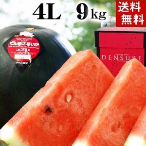 (送料無料)でんすけすいか 秀品 3L大型 8〜9kg 黒い...