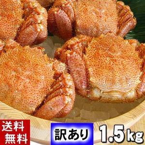 北海道産 毛ガニ 訳あり 3〜7尾 計2キロ 蟹姿 北海道産...