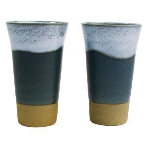無料包装・無料熨斗名書き 白波一味ビールカップペアセット お祝 内祝 ご挨拶 ギフト|kanji