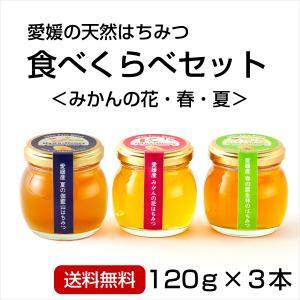 はちみつ3種セット120g×3本 (みかんの花・春・夏)|kanjyukuya