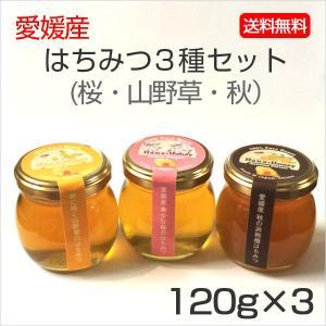はちみつ3種セット120g×3本 (桜・山野草・秋)|kanjyukuya