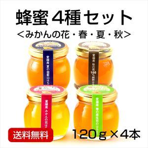 はちみつ4種セット120g×4本 (みかんの花・春・夏・秋)|kanjyukuya