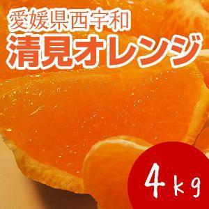 名産地の完熟清見オレンジ4kg|kanjyukuya