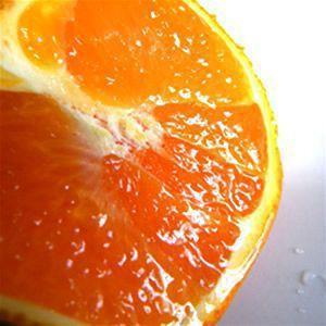 名産地の完熟清見オレンジ4kg|kanjyukuya|02