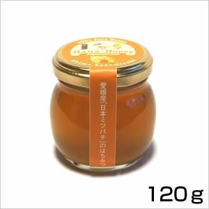 日本ミツバチの2年蜂蜜 120g kanjyukuya