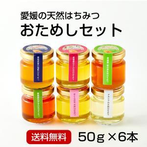 はちみつお試し50g×6本<みかん・春・夏・ミズキ・桜・アカシア>|kanjyukuya