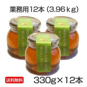 春の原生林はちみつ 330g×12本<3.96kg>|kanjyukuya