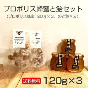プロポリスのどケアセット<プロポリス蜂蜜120g×3本、のど飴×2袋><店舗配送商品>|kanjyukuya